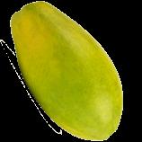 Riesenpapaya