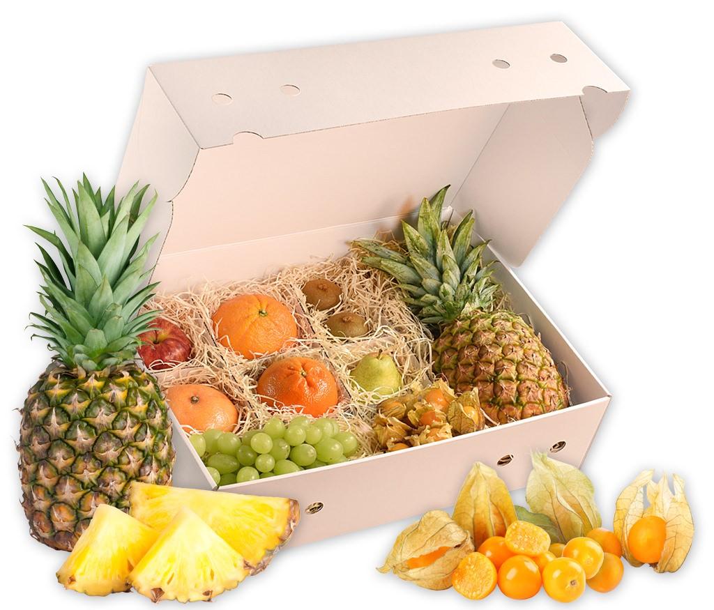 Obstbox Morgentau, frische Früchte für einen gesunden Herbst