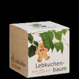 Lebkuchenbaum-Pflanzwürfel
