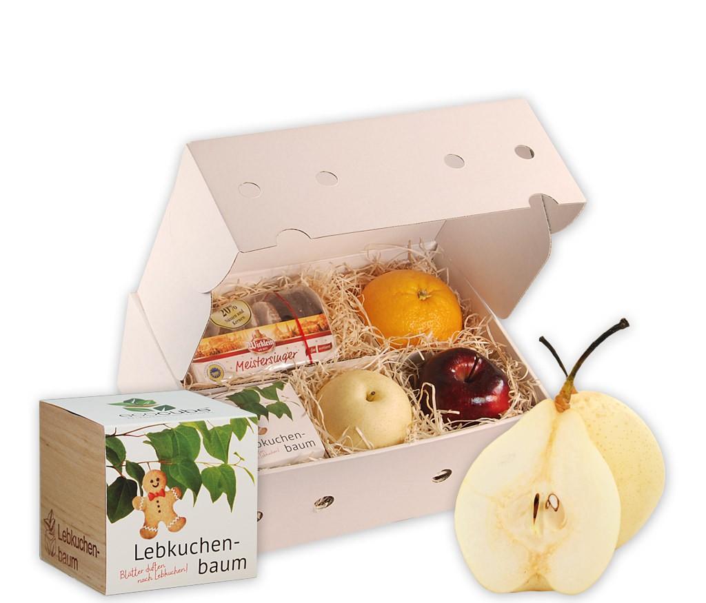 Obstbox Lebkuchenbaum mit leckerem Obst, Nürnberger Lebkuchen und einem Lebkuchenbaum im Pflanzwürfel