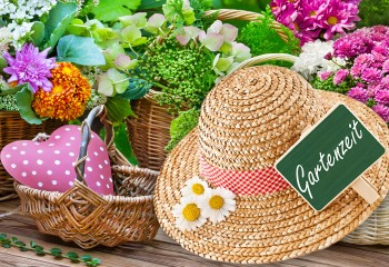 Sommerzeit – Gartenzeit
