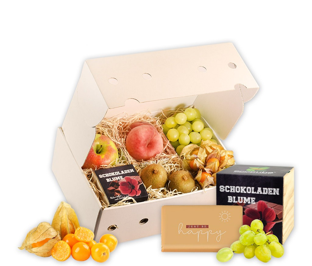 Obstbox Ich schenk dir eine Blume mit frischen Früchten, Schokoladenherz und einer Schokoladenblume zum selbst ziehen