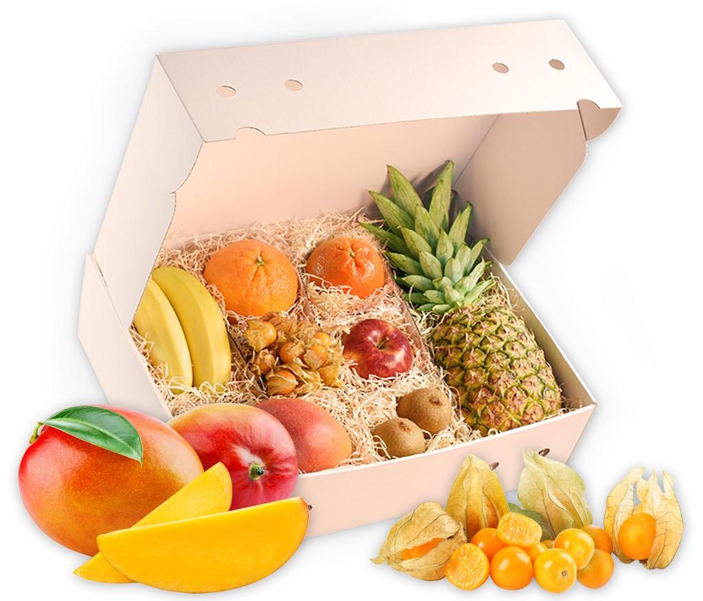 Obstbox Indian-Summer, frische Herbstfrüchte in einer dekorativen Geschenkverpackung