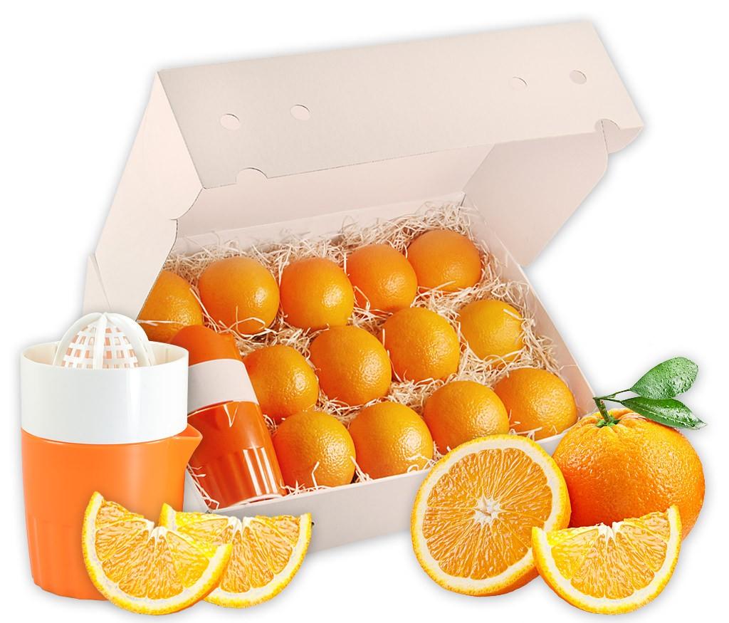 Obstbox für frisch gepressten Orangensaft - saftige Pressorangen in einer Obstbox, wahlweise mit manueller Saftpresse