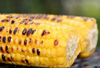 Tag des Maiskolbens