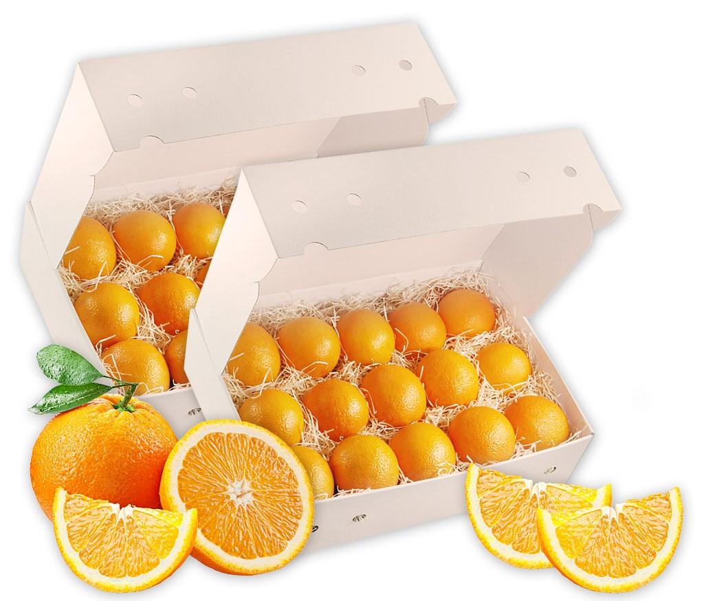 Obstbox für frisch gepressten Orangensaft - saftige Pressorangen in einer Obstbox