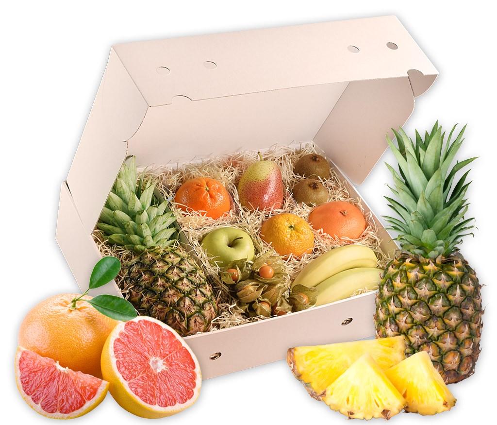 Obstbox Herbstgruß, leckere Früchte in einer Geschenkbox